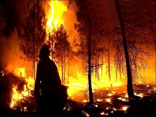 forestfiren