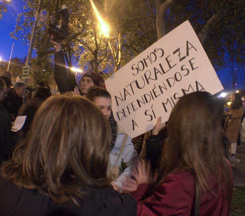 Manifestación 6/12/2019 en Madrid