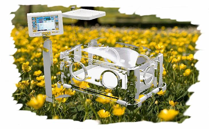 Flores_incubadora
