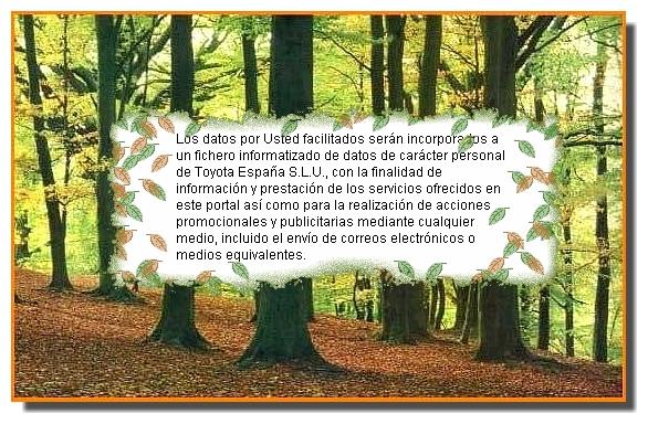 bosque_clausula