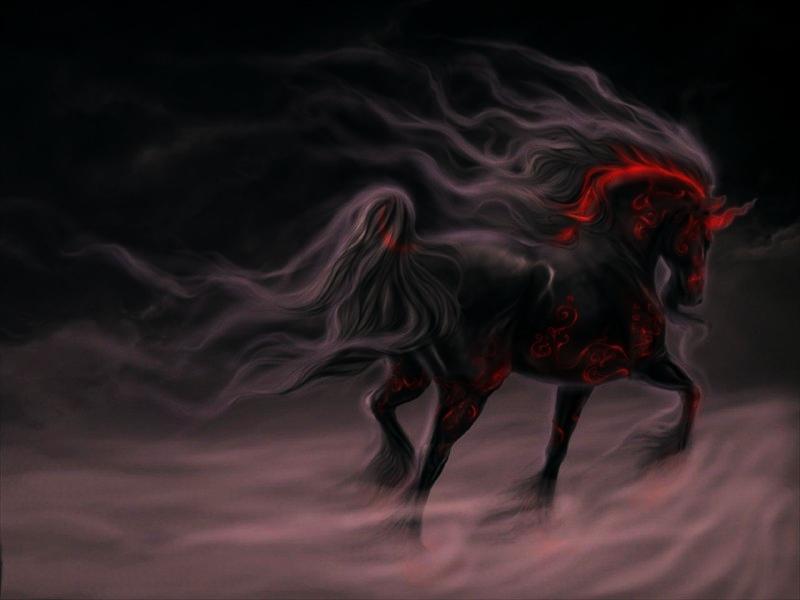 wallpapers-caballo-salvaje